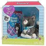 American girl Gray Cat Pet Set