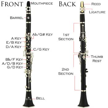 E Flat Clarinet Range Amazon.com: Men...