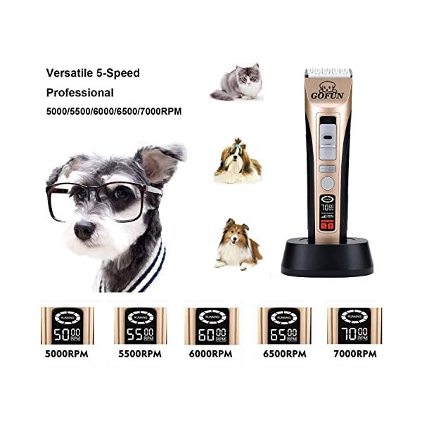 GOFUN Dog Clippers, 5 Speed Cordless Low Noise Pet Clippers Dog Trimmer for Dogs Cats Horses with LCD Screen Indicate Power/Oil/Cleaning 2