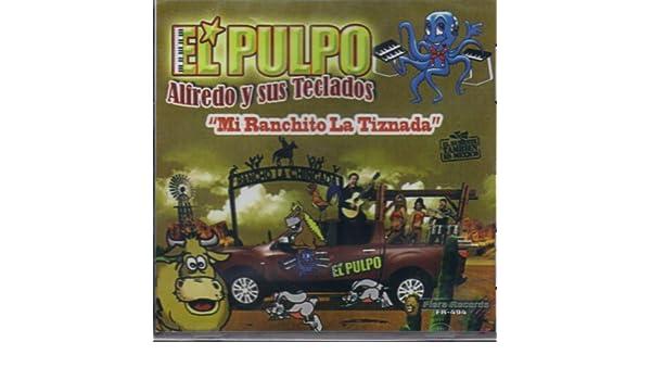 FIERA RECORDS CD 2012 - El Pulpo Alfredo Y Sus Teclados, mi Ranchito La Tiznada - Amazon.com Music