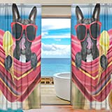 Vantaso Sheer Curtains 78 inch Long French Bulldog On Ocean Beach Eating Ice Cream for Kids Girls Bedroom Living Room Window Decorative 2 Panels