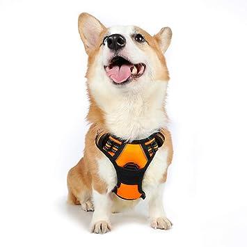Rabbitgoo No Pull Dog Harness Small, Front Loading Pet Vest Harness