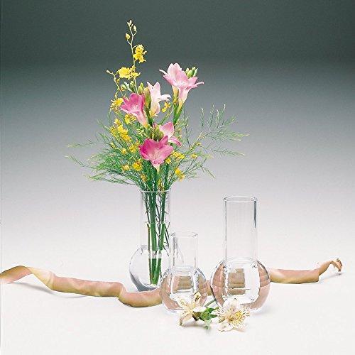 Amazon Carlisle 465007 Acrylic Bud Vase 162 Diameter X 435