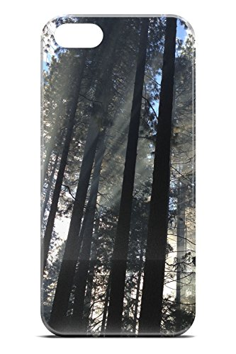 Yosemite Valley Trees - Photo by Mike Petrucci - Slim Phone Case - Apple iPhone - Valley Fashion Tmobile