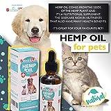SWISSLAB Raw Organic Hemp Oil for Dogs & Cats Full Spectrum Natural Pets