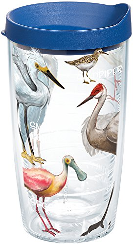 Tervis 1162794 Real Birds of Florida Insulated Tumbler with Wrap and Blue Lid, 16oz, Clear