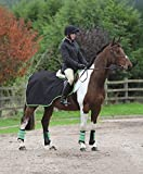 CONTINENTAL PATTERN EXERCISE SHEET 600 Denier Ripstop Waterproof Breathable [BLACK/BRIGHT GREEN] [4'3] by Shires