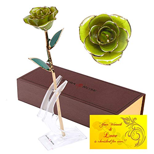 DuraRose Authentic Rose with Long Stem Dipped in 24k Gold, with Stand and Love Card - Best Gift for Loves Ones. Ideal for Valentine's Day, Mother's Day, Anniversary, Birthday, (Light ()