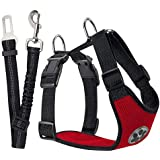 SlowTon Dog Car Harness Seat Belt Vest Harness, Breathable Mesh Fabric with Car Vehicle Connector Belt (XX-Small, Red)