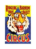 AD CIRCUS BARNUM BAILEY RINGLING BROS TIGER USA FRAMED PRINT F12X2242 offers