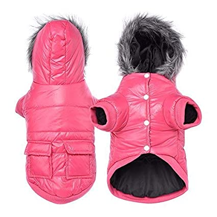 cf7c6c89a6ca Enjoying Winter Puppy Coat - Dog Winter Coat Waterproof Warm Dog hooded coat  for Small Medium