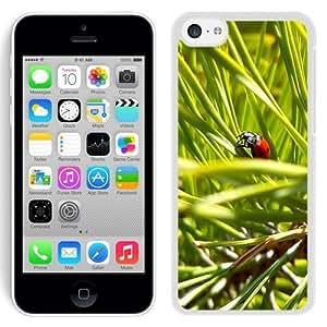 NEW Unique Custom Designed iPhone 5C Phone Case With Macro Ladybug Green Grass_White Phone Case
