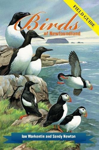 Read Online Birds of Newfoundland: Field Guide pdf epub