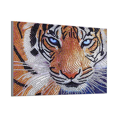 Special Shaped Diamond Painting,5D DIY Partial Drill Cross Stitch Embroidery Painting(6 Styles) (25X35CM, F)