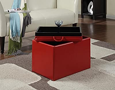 Convenience Concepts 143523 Modern Accent Storage Ottoman