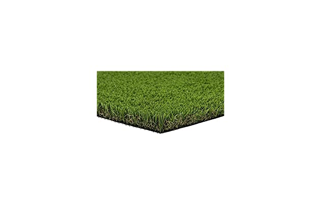 Best Artificial Grass For Dogs Amazon Com