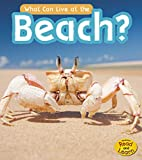 What Can Live at the Beach? (What Can Live There?)