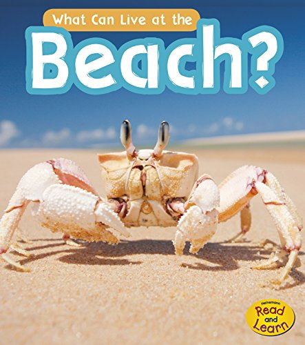 What Can Live at the Beach? (What Can Live There?) by Heinemann