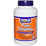 Plant Enzymes 240 VegiCaps (Pack of 2) Review
