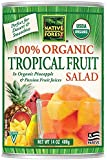 Native Forest Organic Tropical Fruit Salad, 14-Ounce Cans (Pack of 6)