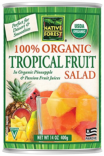 Native Forest Organic Tropical Fruit Salad, 14 Ounce Cans (Pack of 6)