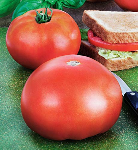 Park's Whopper Improved F1 Hybrid Tomato Seeds - beautiful big tasty red tomato(25 - Seeds) ()