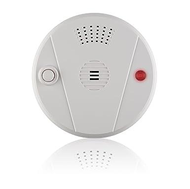 Blaupunkt Security HD-S1 - Sensor de Calor inalámbrico compatible con alarmas Blaupunkt SA y Q: Amazon.es: Bricolaje y herramientas