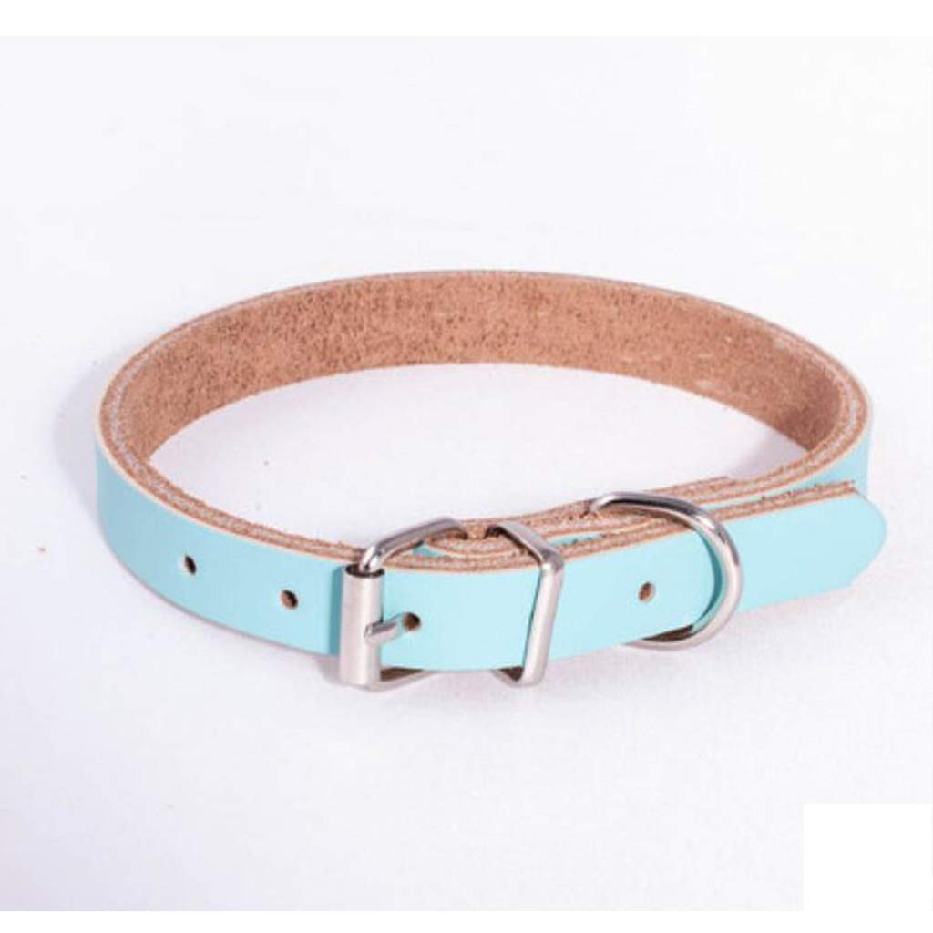 37-48CM Dog Lead Pet Collar, bluee Leather Dog Collar Cat Leash Rope Out Portable 2.2CM Wide (Size   47-61CM) Dog Training Leash (Size   37-48CM)