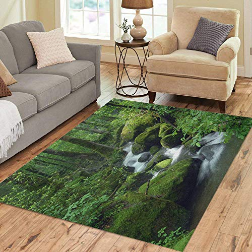 (Pinbeam Area Rug Green Forest Cascade Falls Over Mossy Rocks Waterfall Home Decor Floor Rug 5' x 7' Carpet)