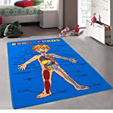 Kids / Baby Room / Daycare / Classroom / Playroom Area Rug. Body Parts. Science. Fun. Educational. Non-Slip Gel Back. Blue. Bright Colorful Vibrant Colors (8 Feet X 10 Feet)