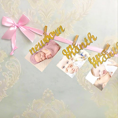 12 Month Photo Banner, First Birthday Decoration, Milestone Photo Banner for First Birthday Party, Great Baby Shower Gift (Pink and Gold) -
