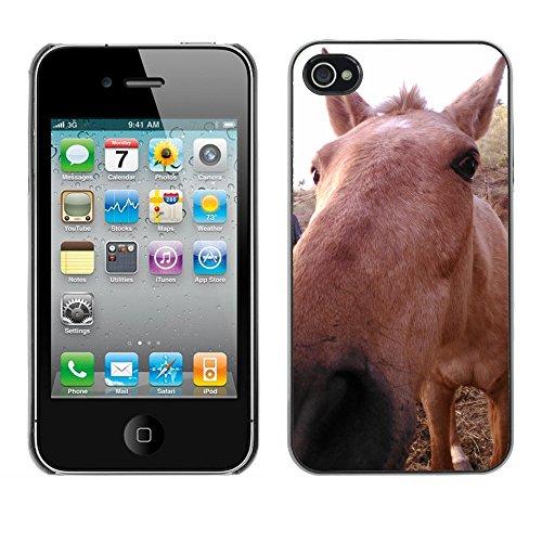 Premio Sottile Slim Cassa Custodia Case Cover Shell // F00012081 cheval // Apple iPhone 4 4S 4G