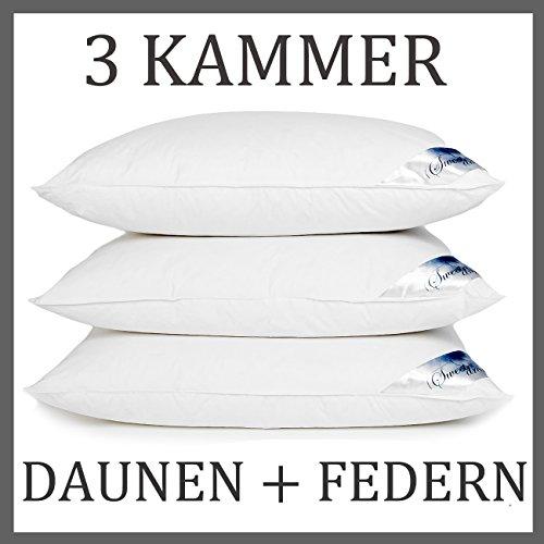 HS16 3 Kammer Kopfkissen Daunenkissen Kissen Daunen Federn 1600 Gr (80x80 cm 3 Kammer)