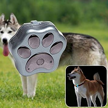 nestter mascotas GPS Tracker en el cuello, localizar perro & gato animales de seguimiento en