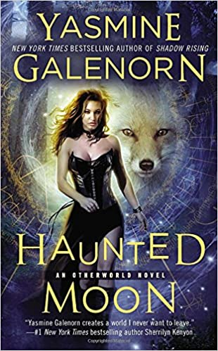 Haunted Moon : An Otherworld Novel