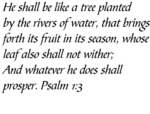 Tapestry Of Truth - Psalm 1:3 - TOT1161 - Wall and home scripture, lettering, quotes, images, stickers, decals, art, and more! - He shall be like a tree planted by the rivers of water, that brings... (A Tree Planted By Rivers Of Water)