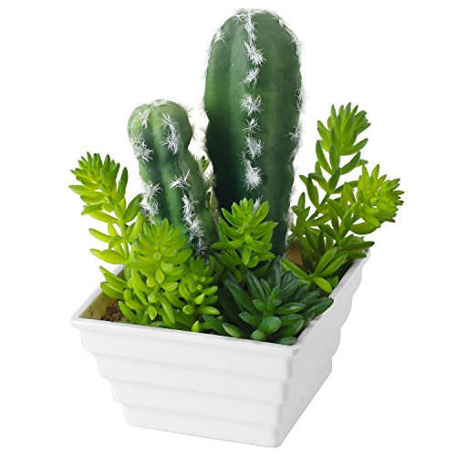 Decorative Artificial Cactus Plant in White Square Ribbed Ce