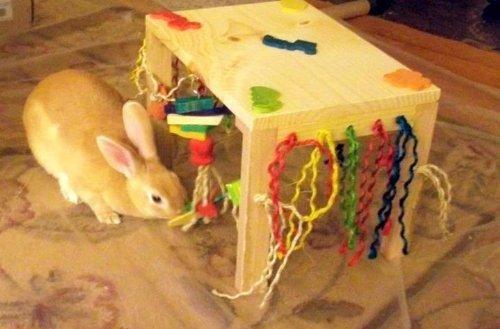 Image of Original Activity Zone Rabbit Toy