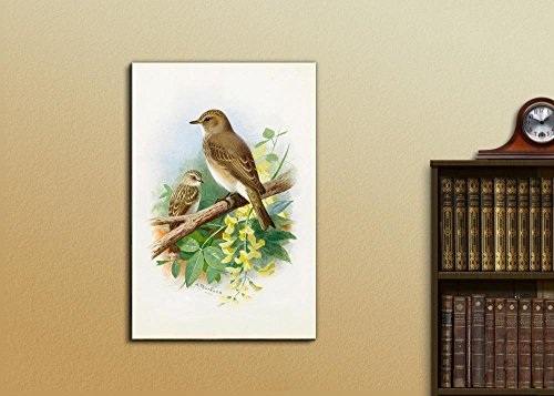 Illustration of 2 Birds Perched onto a Tree Branch