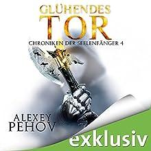 Glühendes Tor (Chroniken der Seelenfänger 4) Hörbuch von Alexey Pehov Gesprochen von: Oliver Siebeck