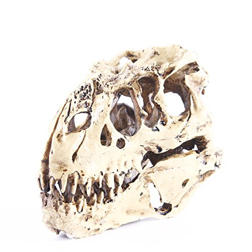 YHOOEE Halloween Decoration Skull Props Resin Crafts Dinosaur Tooth Fossil Teaching Skeleton Model Home Office Drop Shipping