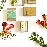 Three Lip Balms | Gift Box | Natural & Organic Rose Citrus Lavender
