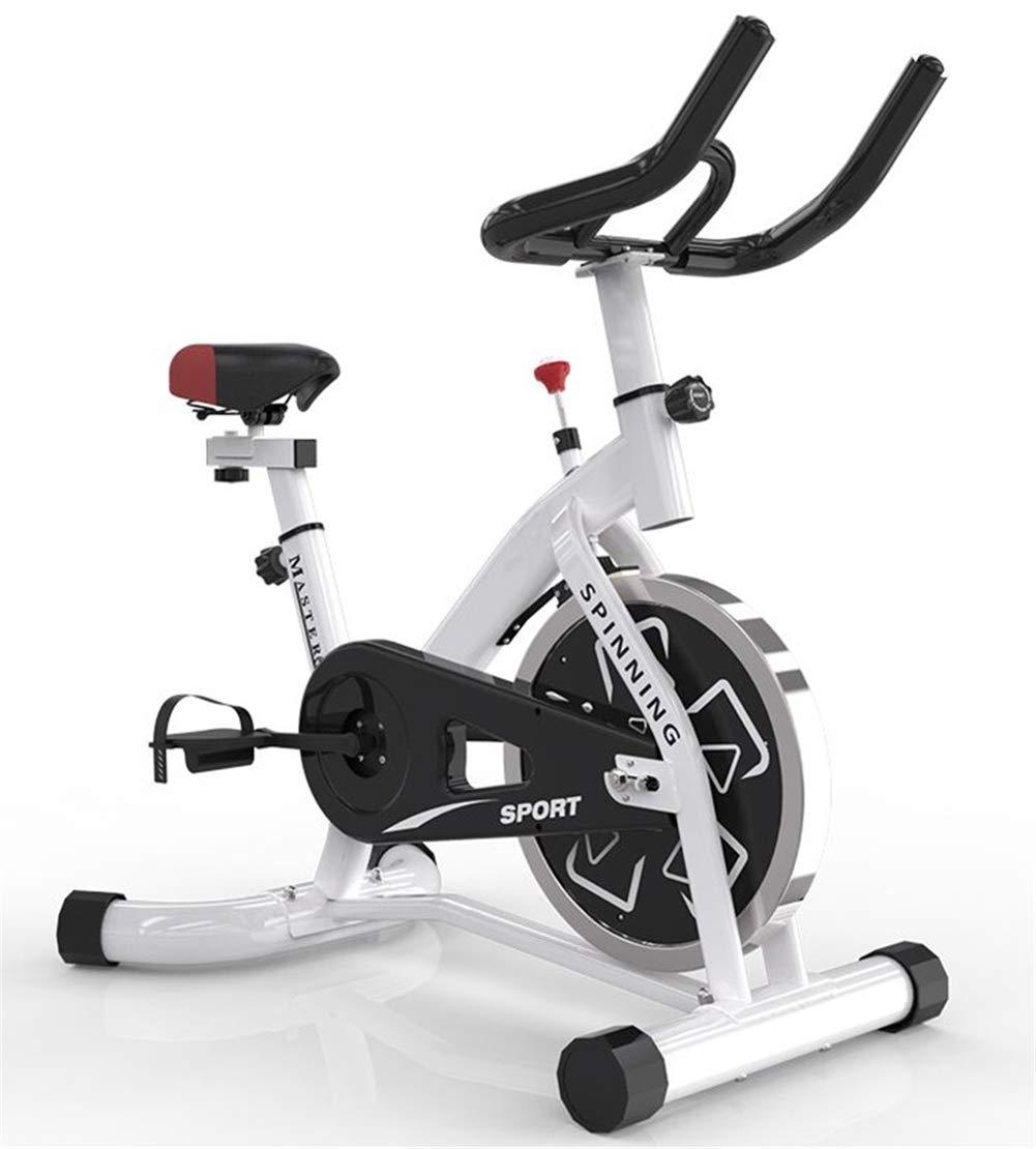 Lcyy-Bike Indoor Cycling Fahrradtrainer Infinite Resistance 6 Kg Schwungrad Cardio Workout Mit Tablet-Halter Und Multifunktionsmonitor Einstellbarer Lenker & Sitzhöhe Atmungsaktives Kissen Weiß