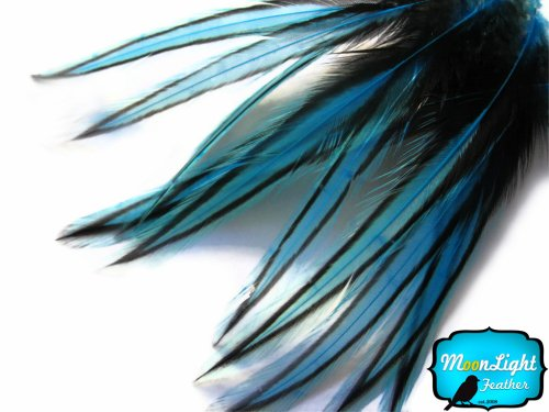 Moonlight Photo (Moonlight Feather, Rooster Feathers; Blue Laced Rooster Cape Feathers - 2 to 4 Inches long - 10 Pieces)