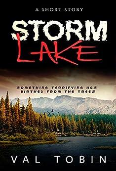 Storm Lake by [Tobin, Val]
