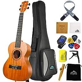 Eastrock Tenor Ukulele 26 Inch Professional Wooden Ukelele Instrument Kit for Adult with Gig Bag,EQ Tuner,Carbon String…