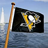 WinCraft Pittsburgh Penguins Boat and Golf Cart Flag
