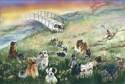 Buy 2 Get 1 Free Rainbow Bridge Pet Sympathy, Card for Dog 3 - Rb Buy