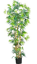 Nearly Natural 5214 Bambusa Bamboo Silk Tree, 6-Feet, Green