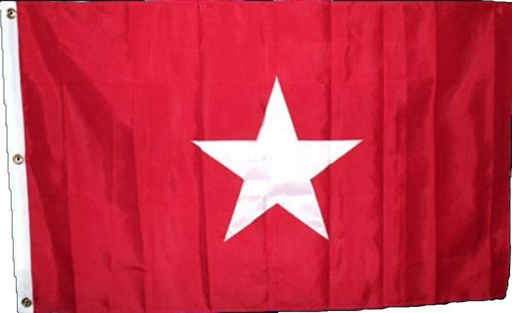 即納!最大半額! 3 x 5刺繍縫製Texas x5 James ' Long Lone B01MT5E6MX Star合成コットンフラグ3 ' x5 ' 3クリップ B01MT5E6MX, ペットフードのラブリー 関東店:ff24e10d --- tadkarecipes.com
